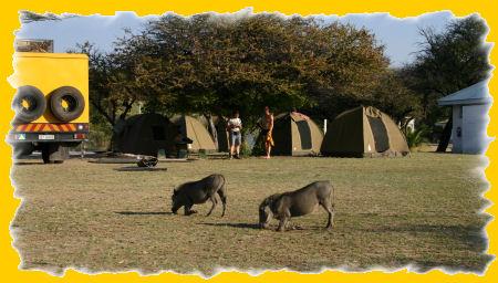 etosha-camping.jpg