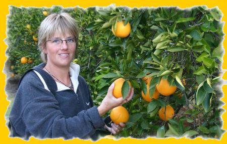 sinaasappels.jpg