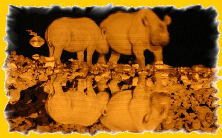 waterhole-neushoorns.jpg