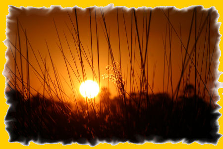 zonsondergang-delta.jpg
