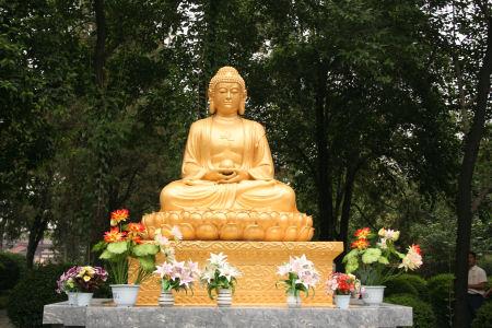 grote-wilde-gans-pagode-2.jpg