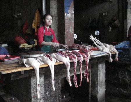 markt-yangshuo-1.jpg