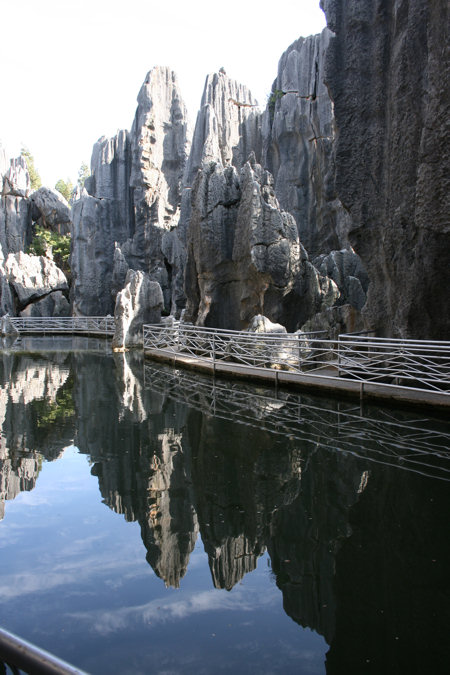 stenen-woud-4.jpg