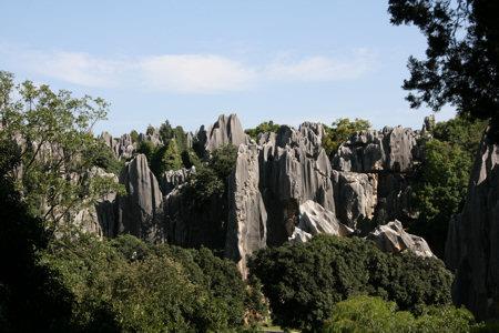 stenen-woud-5.jpg