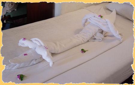 handdoek.jpg