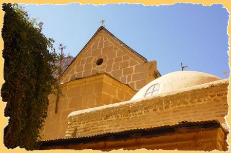 klooster-braamstruik.jpg